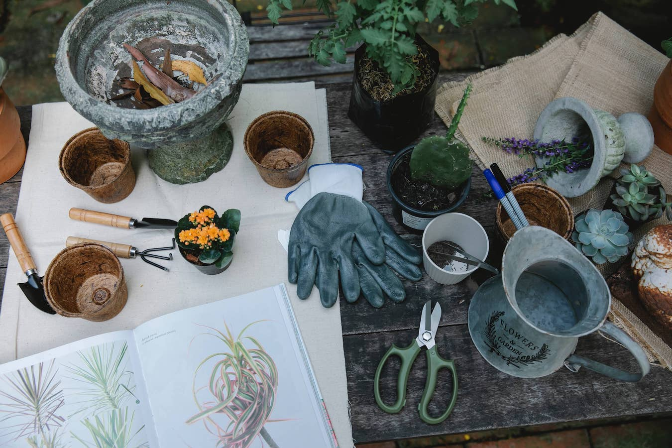 Can houseplants be recycled? Recycle pots. Pots of different materials and tools on a table