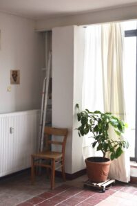 Can you put plants on a radiator?