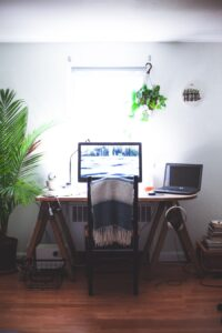 Why are houseplants important? Plants in an office